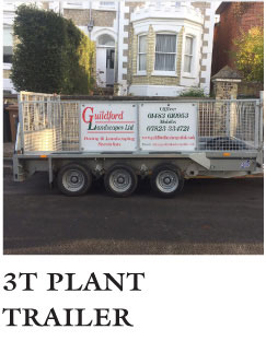 Plant Trailer Godalming